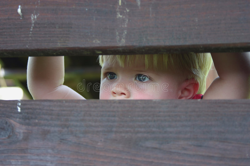 Download The Gaze stock image. Image of face, stare, child, gaze - 474379