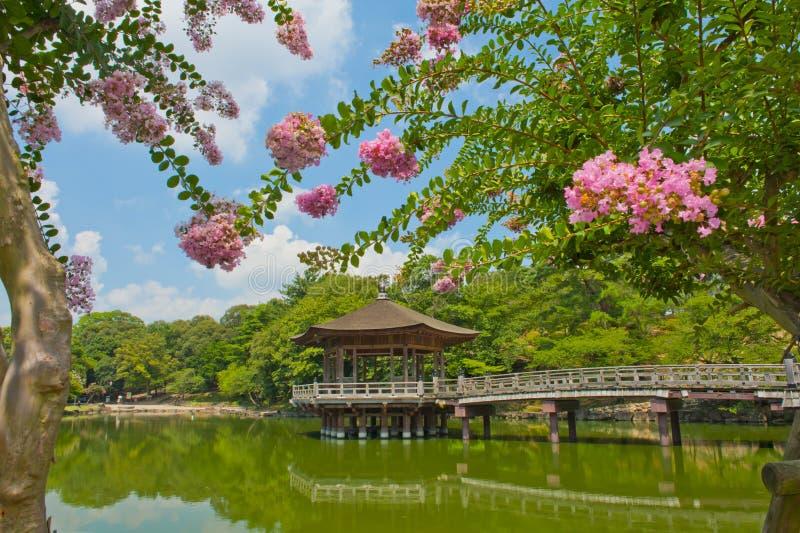 Gazebo à Nara photo libre de droits