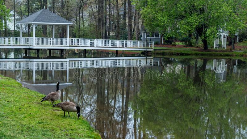 Gazebo on bridge going over pond royalty free stock image