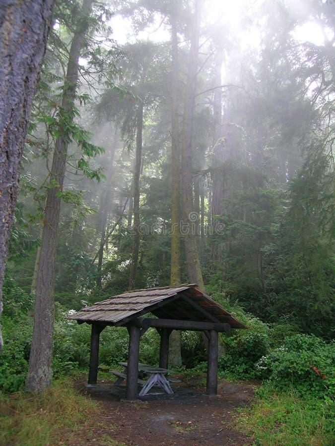 Gazebo da floresta tropical imagem de stock