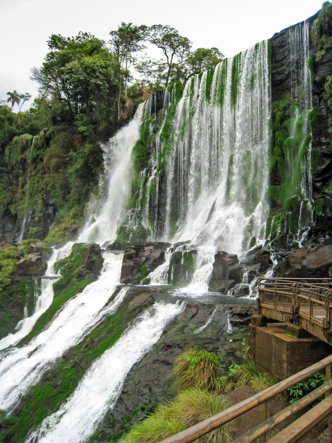 Gazebo di legno accanto alle cascate con vegetazione in Iguazu immagine stock