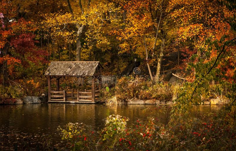 Gazebo And Dock In Autumn Forest Free Public Domain Cc0 Image