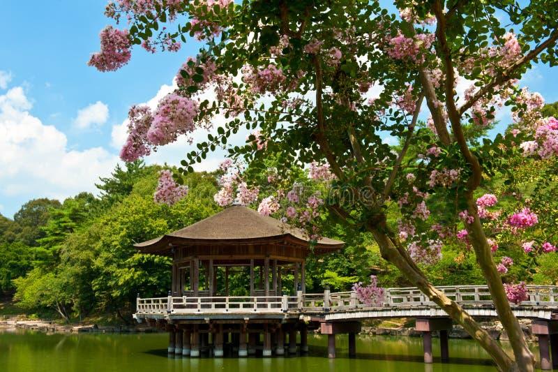 Gazebo in Nara royalty free stock images