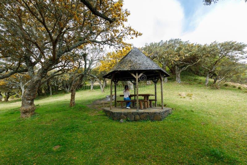 Gazebo nel DES Cafres, Reunion Island di Plaine della La fotografia stock