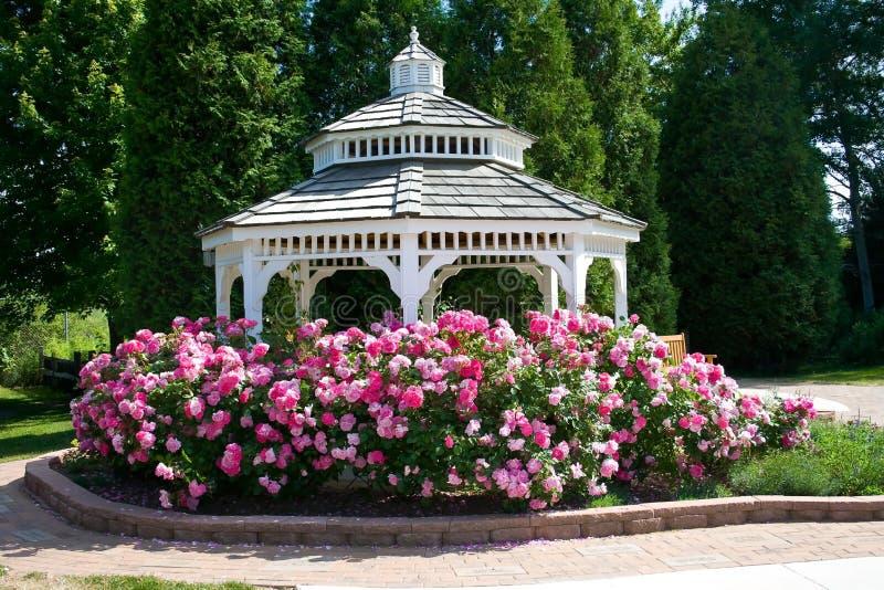 Gazebo rodeado con las rosas rosadas. imagenes de archivo