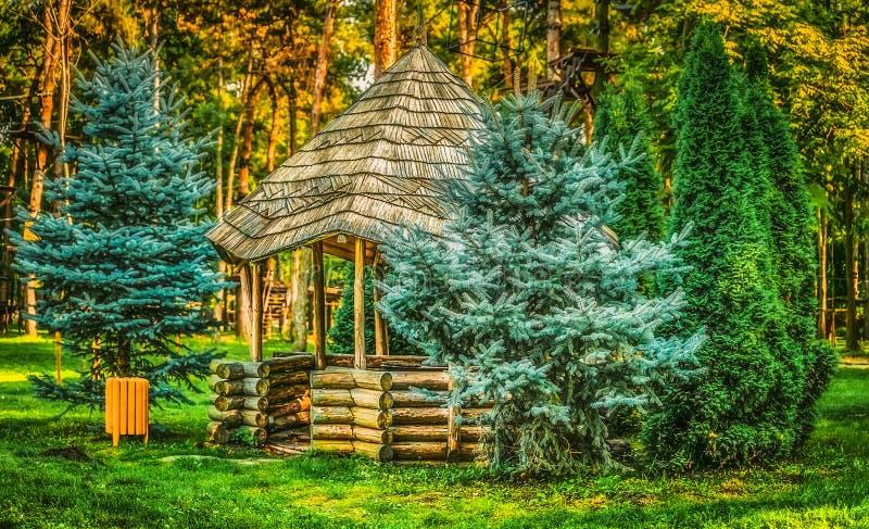 Gazebo in the woods. Natural park Comana, Giurgiu county, Romania stock images