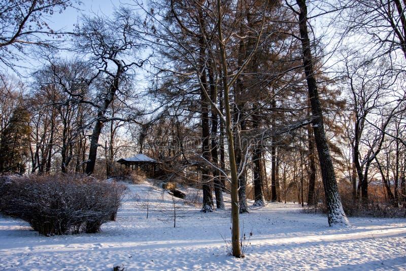 Gazeboen i en vinter parkerar arkivfoton