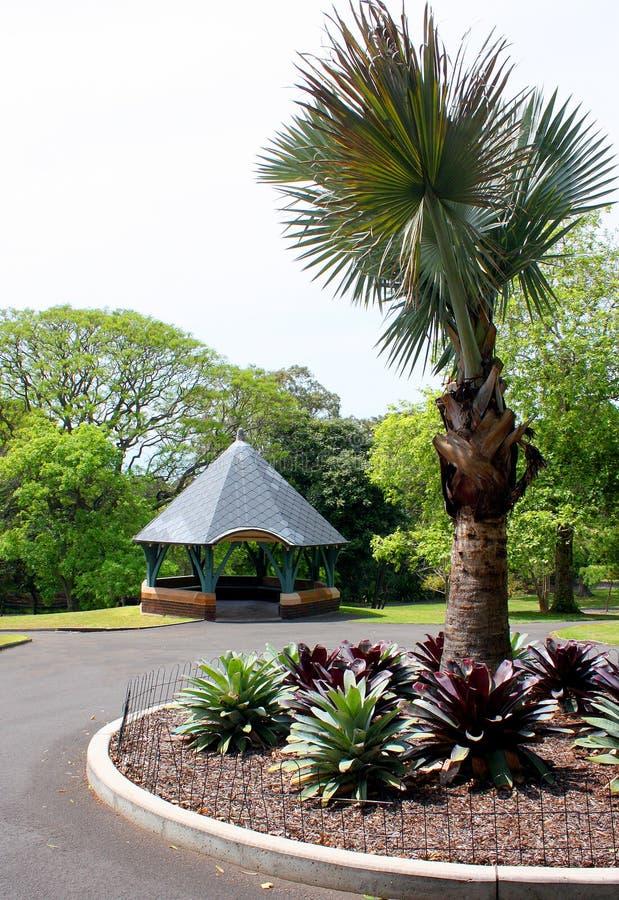 Gazeboen och palmträdet parkerar in arkivfoto
