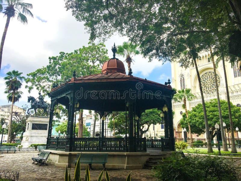 Gazeboen på Seminario parkerar, Guayaquil Ecuador royaltyfria foton