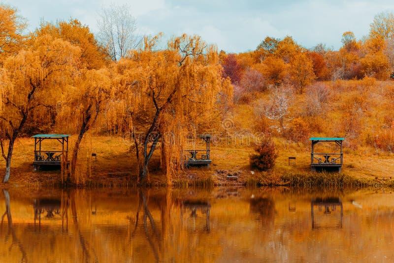Gazebos und Trauerweiden auf lakeshore an einem klaren sonnigen Herbsttag und an ihrer Reflexion im See lizenzfreies stockbild