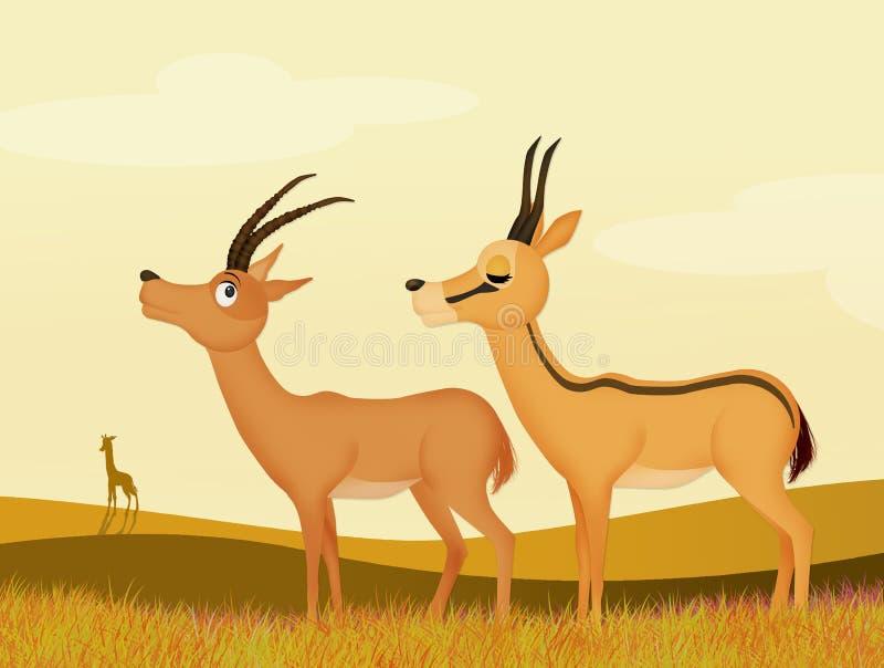 Gazelle in de wildernis vector illustratie