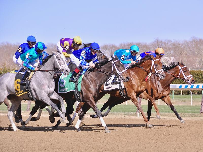 Fantastic Finishes at Historic Aqueduct Racetrack. Dramatic photo finishes from beautiful Aqueduct Racetrack. Six thoroughbreds noses apart as they near the royalty free stock photography