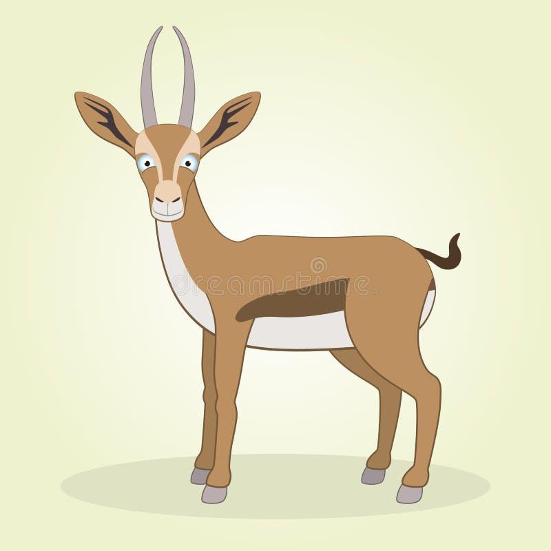 Gazelle Stock Image