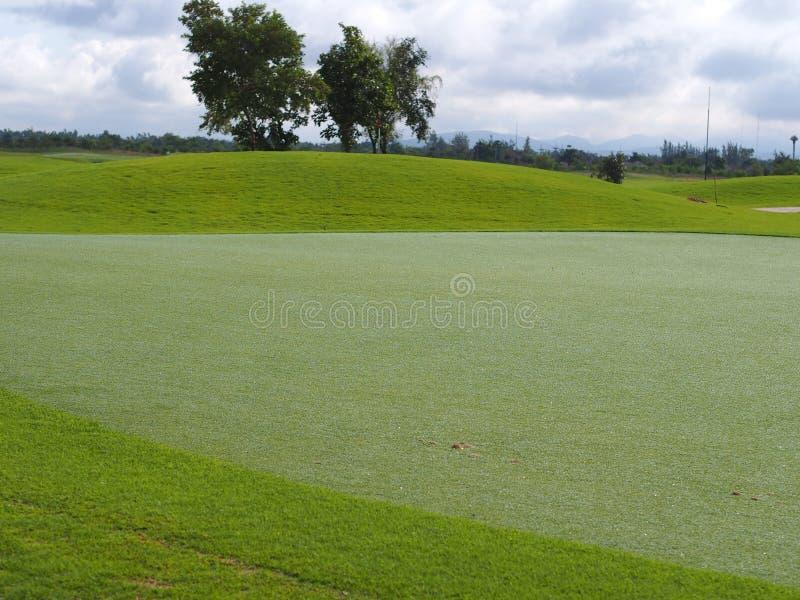 Gazon de putting green dans le terrain de golf photo libre de droits