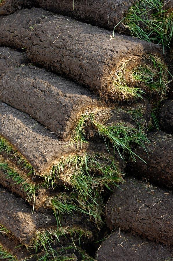 Gazon Rolls de pelouse photos libres de droits