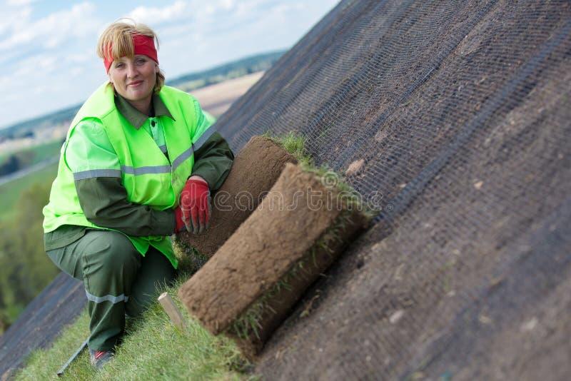 Gazon roulé d'herbe de gazon pour la nouvelle installation de pelouse photos stock