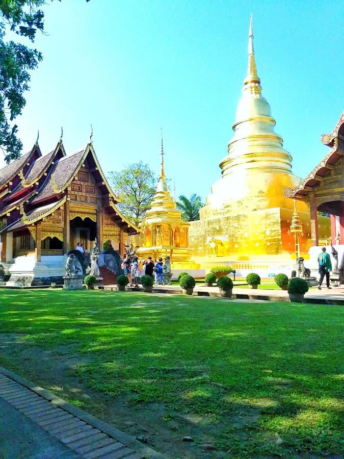 Gazon wśród Wata Phra Singh Tajlandia obrazy stock