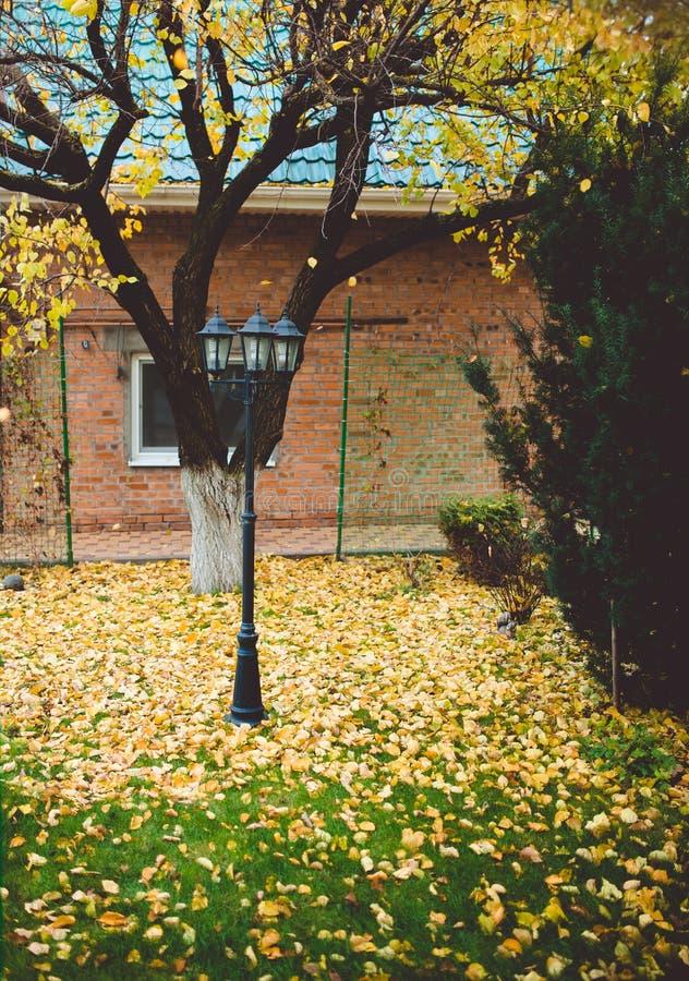 Gazon w jardzie intymny dom zakrywa z jesieni ulistnieniem Ogrodowy lampion ozdabia środkową część zdjęcia royalty free