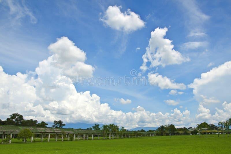 Gazon z chmurą i niebem fotografia stock