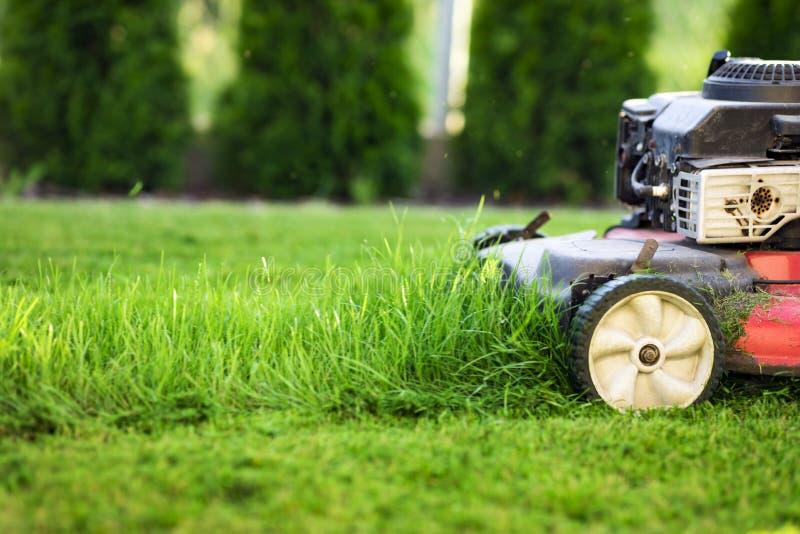 Gazonu kosiarz ciie zielonej trawy fotografia stock