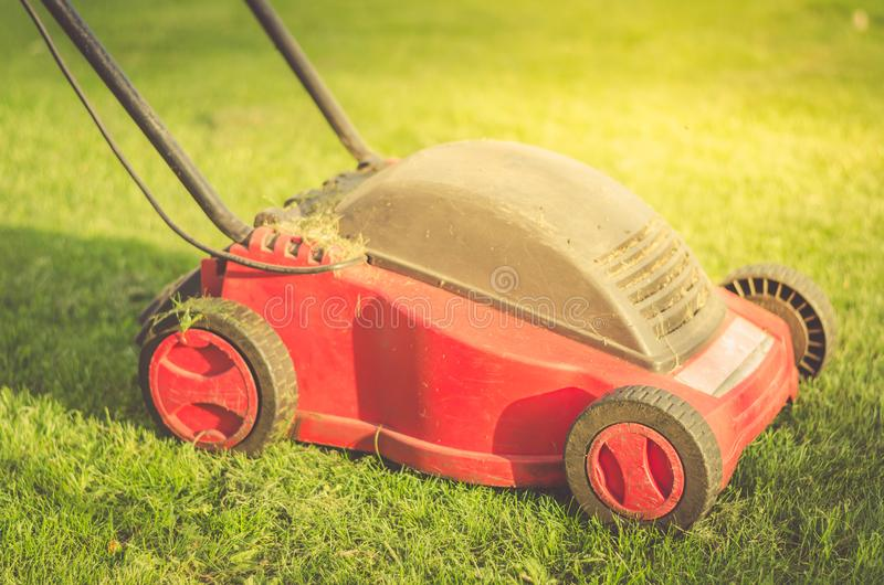 Gazonu kosiarz na trawy, gazonu kosiarzie na trawie/ Selekcyjna ostrość zdjęcia royalty free