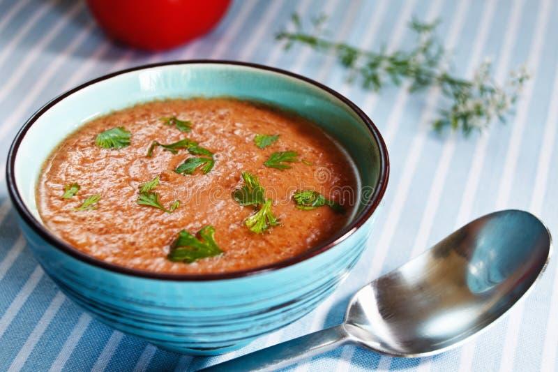Gazpacho,西班牙蕃茄根据冷蔬菜汤 免版税库存照片
