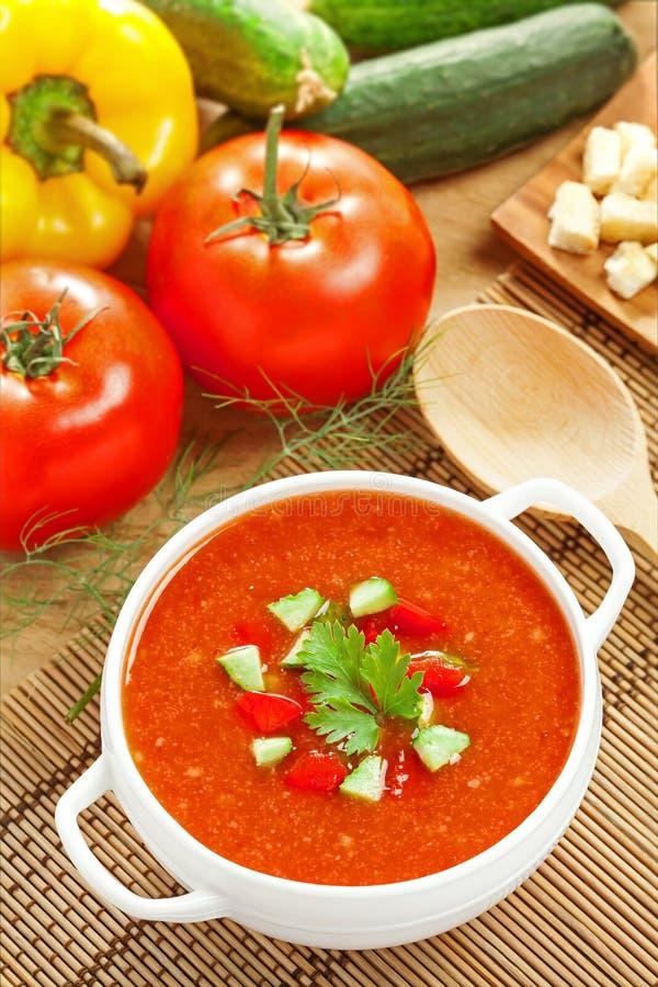 Gazpacho ed ingredienti fotografia stock libera da diritti