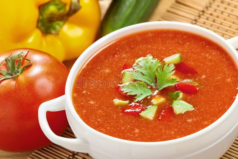 Gazpacho ed ingredienti immagine stock