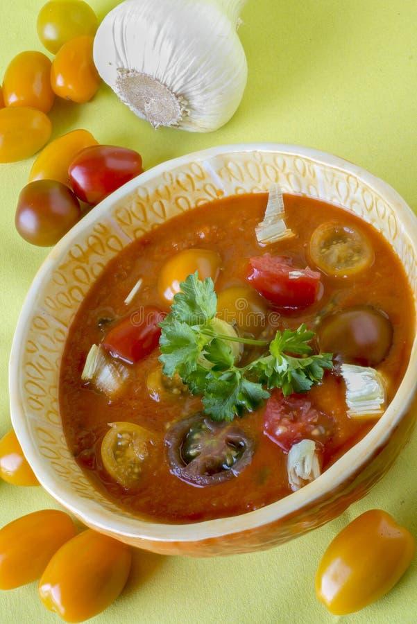 Gazpacho kall spansk soppa fotografering för bildbyråer