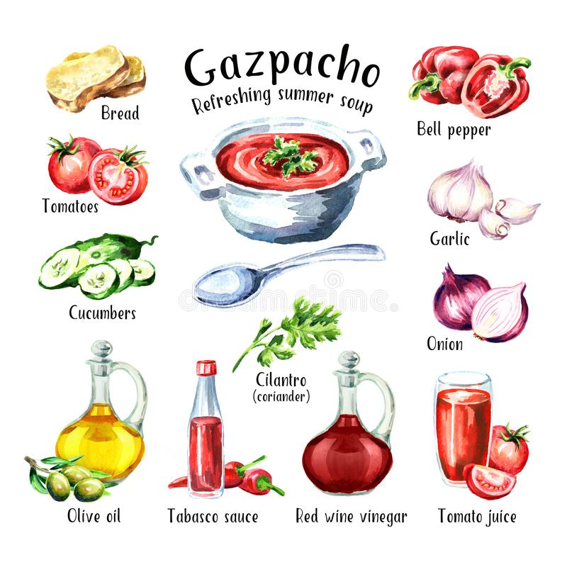 gazpacho Minestra di rinfresco fredda di estate ingredienti Illustrazione disegnata a mano dell'acquerello, isolata su fondo bian royalty illustrazione gratis