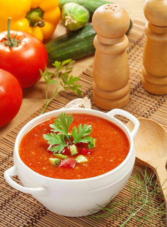 Gazpacho och ingredienser fotografering för bildbyråer