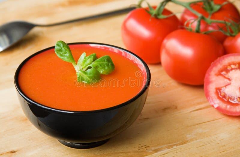 Gazpacho tomate-basé froid espagnol de potage image stock
