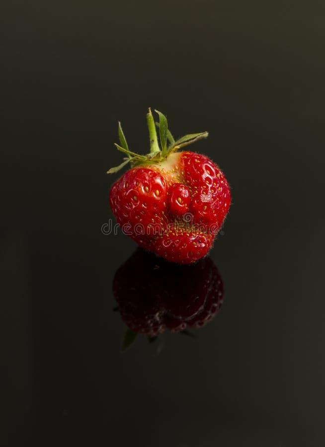 Gderliwa stawiająca czoło truskawka fotografia stock