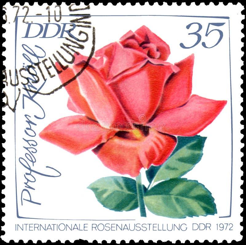 GDR - CIRCA 1972: portostämpel som skrivs ut i GDR-showbild av den rosa professorn Knoll stock illustrationer