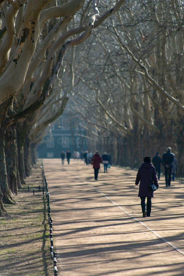 Gdynia, Pomorskie/Polonia - febrero, 27, 2019: Parque de Kasprowicz en Szczecin Peatones que caminan en los callejones del parque fotografía de archivo libre de regalías