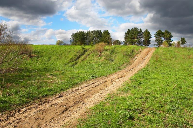 gdziekolwiek zielona pola road obrazy stock