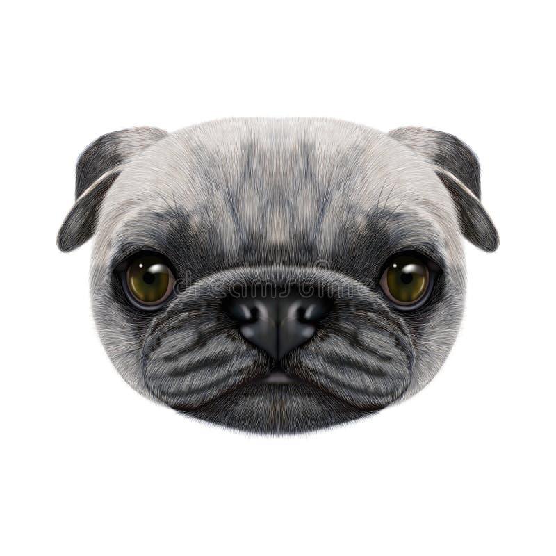 Geïllustreerd gezicht van Pug Hond royalty-vrije stock foto's
