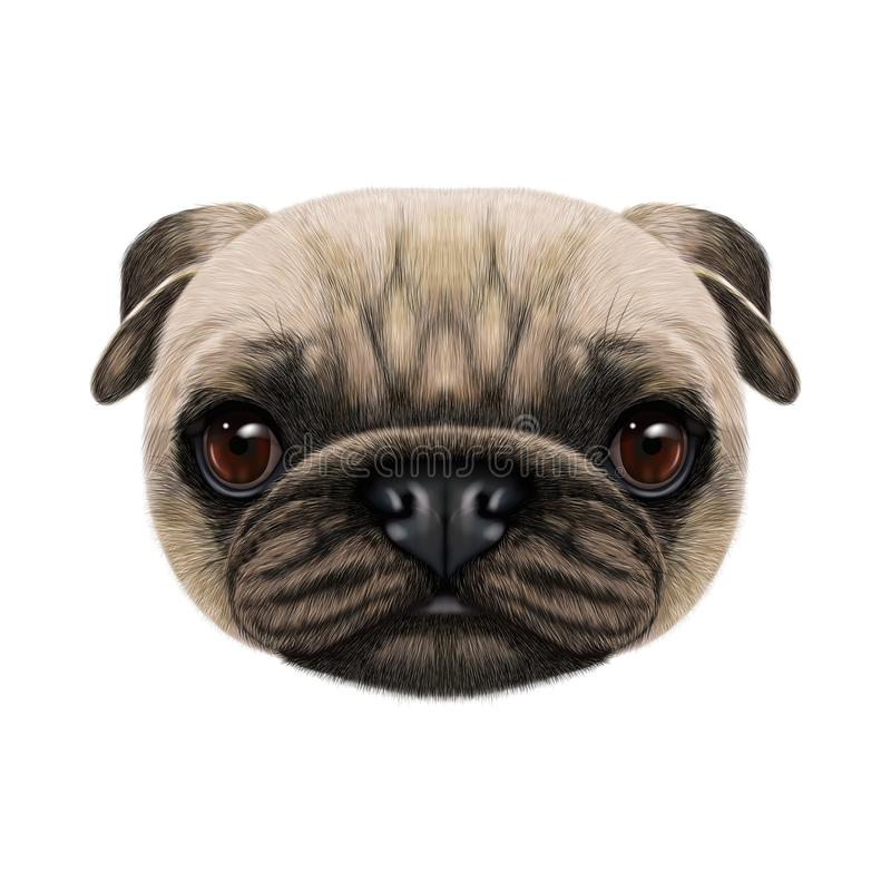 Geïllustreerd gezicht van Pug Hond stock afbeeldingen