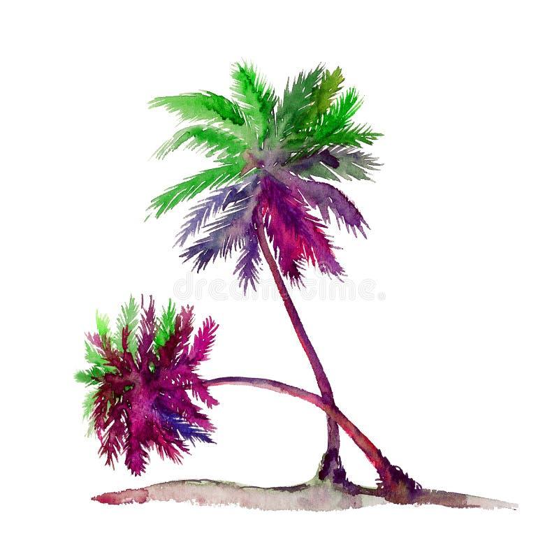Geïsoleerd bij het witte kleurrijke de waterverf van paarpalmen schilderen, het element van het illustratieontwerp stock illustratie