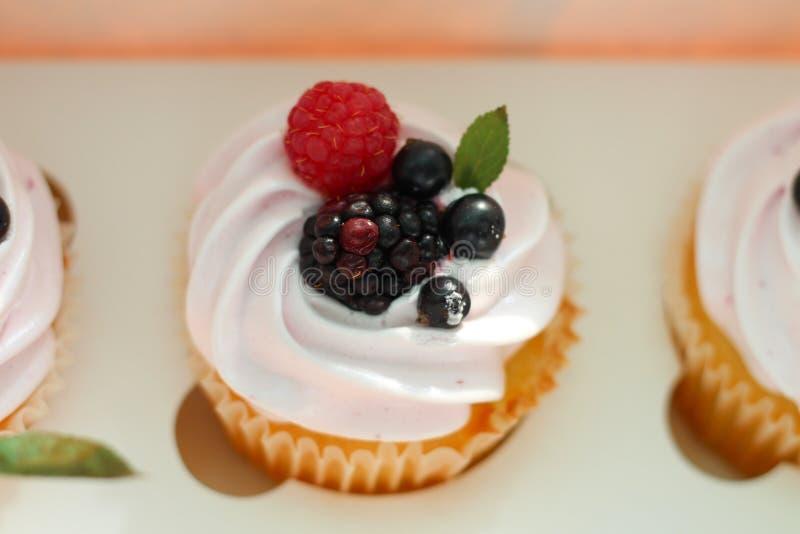 Geïsoleerd cupcake met room, kers met een blad en zwarte bes in een het bewerken doos op een witte achtergrond stock foto's