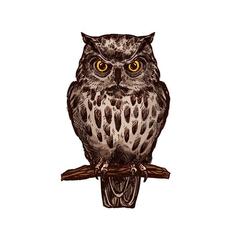 Geïsoleerd de schetspictogram van de uilvogel vector royalty-vrije illustratie