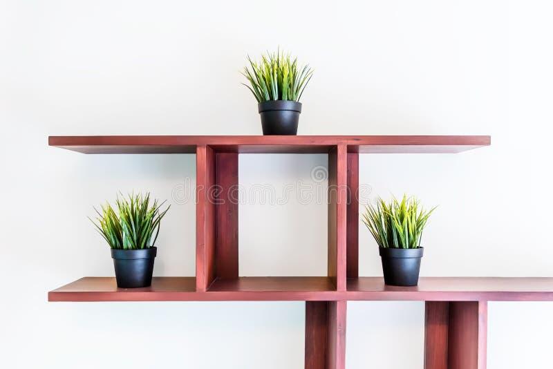 Geïsoleerd drie installaties op de plank stock foto