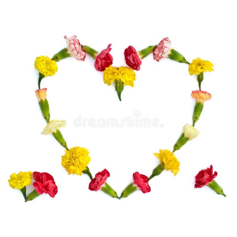 Geïsoleerd hart van weidebloemen royalty-vrije stock afbeelding