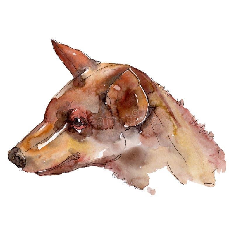 Geïsoleerd hond hoofdhuisdier Waterverf achtergrondillustratiereeks Het geïsoleerde element van de hondenillustratie vector illustratie
