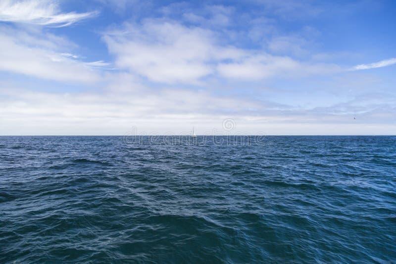 Geïsoleerd jacht die in de blauwe Atlantische Oceaan dichtbij Monterey, Californië varen royalty-vrije stock foto