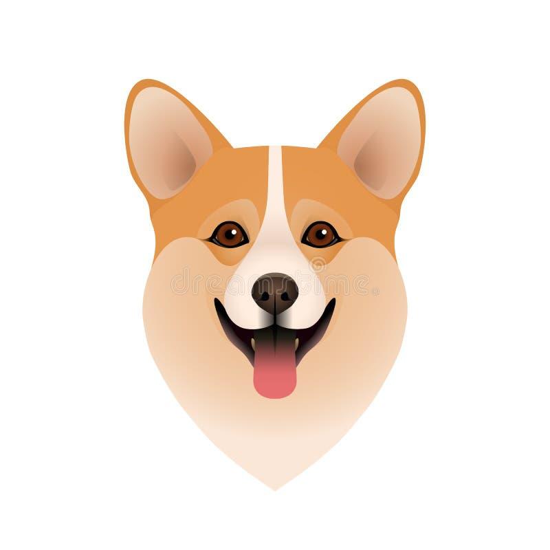 Geïsoleerd kleurrijk hoofd van gelukkige Welse corgi pembroke of cardigan op witte achtergrond Vlak de hondportret van het beeldv stock illustratie