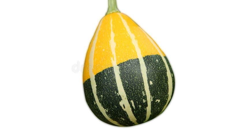 Geïsoleerd van de meloen geelgroene close-up van Thailand op witte backgro stock foto
