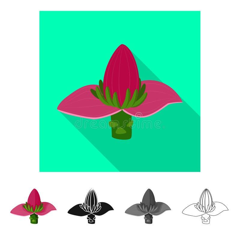 Geïsoleerd voorwerp van banaan en bloempictogram r vector illustratie