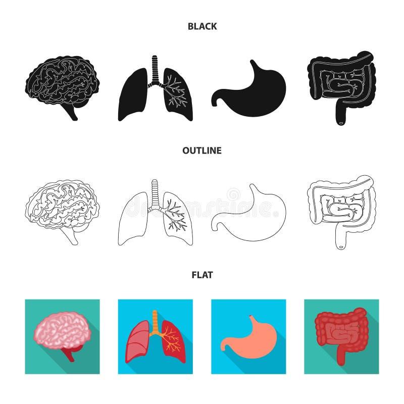 Geïsoleerd voorwerp van biologie en wetenschappelijk symbool Inzameling van biologie en het symbool van de laboratoriumvoorraad v royalty-vrije illustratie