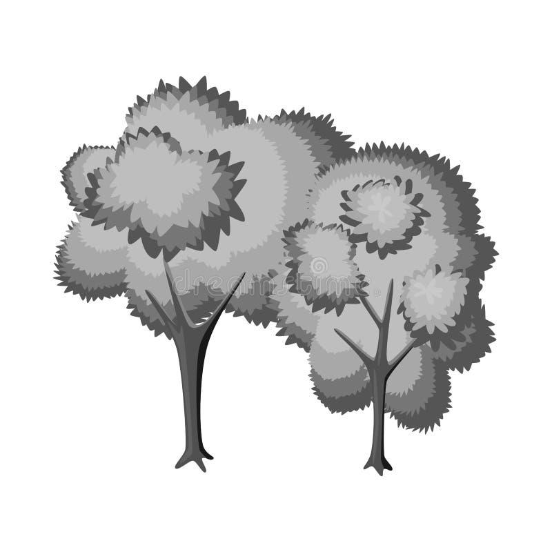 Geïsoleerd voorwerp van boom en vergankelijk embleem Reeks van boom en groene voorraad vectorillustratie vector illustratie
